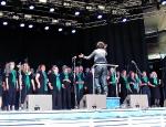 Plænen Tivoli 2011